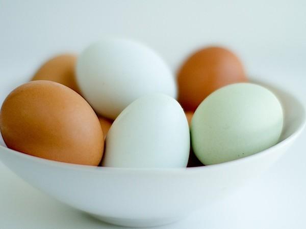 Eggs (48 of 48)