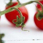 Savory Tomato Crisp