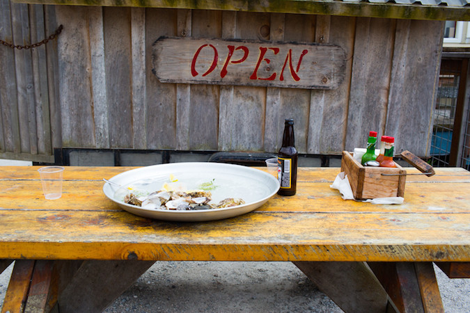 Hog Island Oysters | Tomales Bay