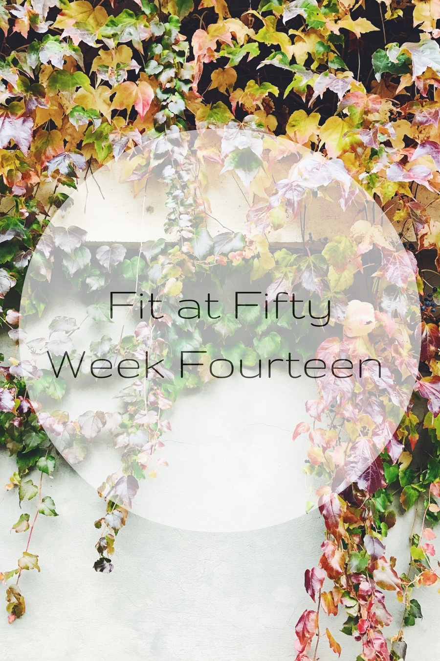 Fit at Fifty Week Fourteen