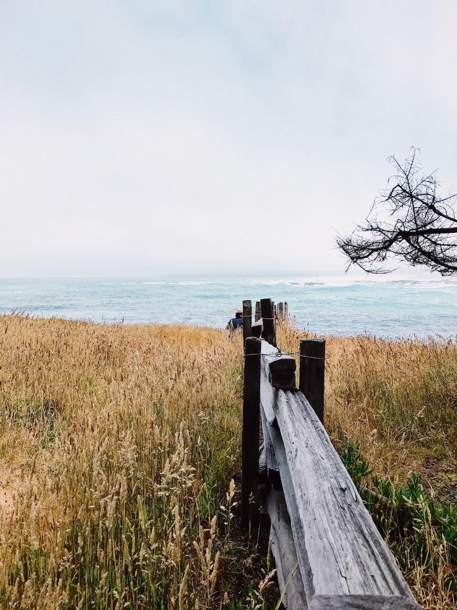 Mendocino Coast view.