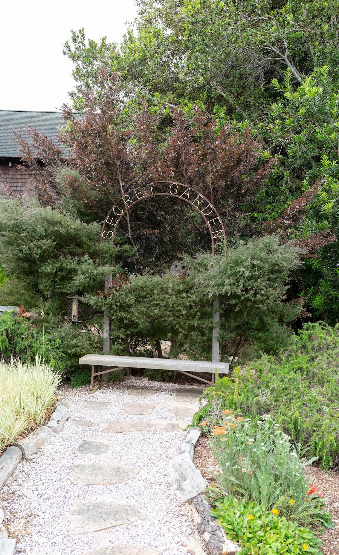 Mendocino coast garden